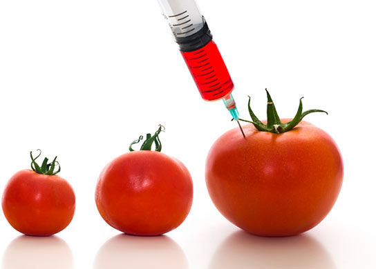 USDA Creates New Program that Invites Blatant Conflicts of Interest on Genetic Engineering