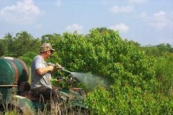 Herbicide Spraying