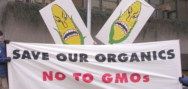 USDA Offers the Biotech Industry Blanket Immunity for Contaminating Organic Crops