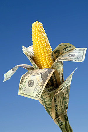 Dangerous Pro-GMO Amendments May Be On Their Last Legs—If We Act Now!