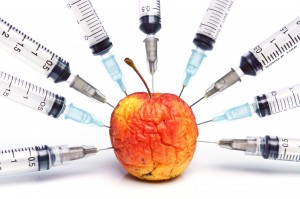 GMO Approval Process FINALLY Being Scrutinized