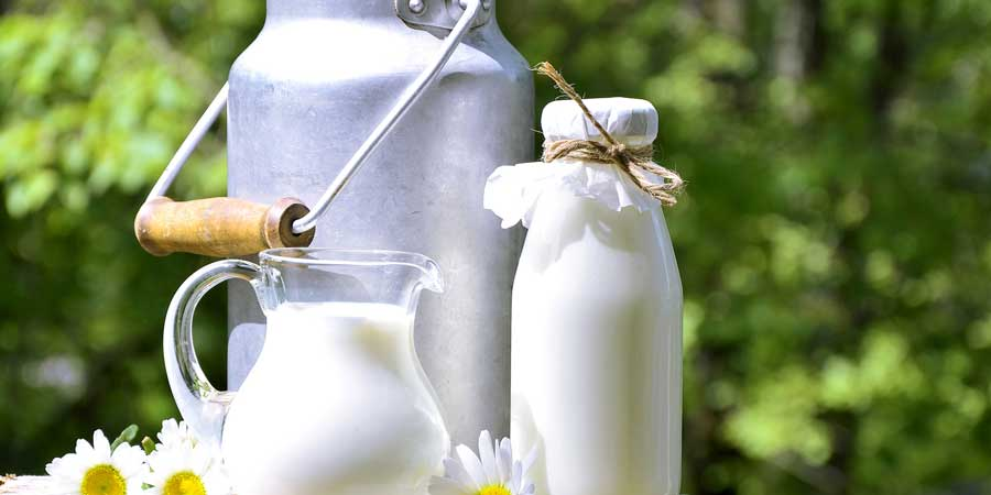 Lactose Intolerant? A Better Milk Is Coming!