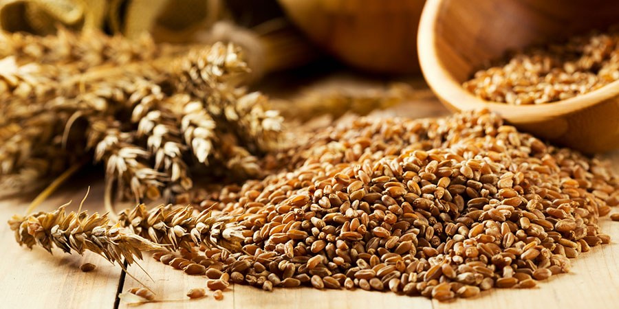 Whole Grains Are Better for You than Processed Grains—Right?