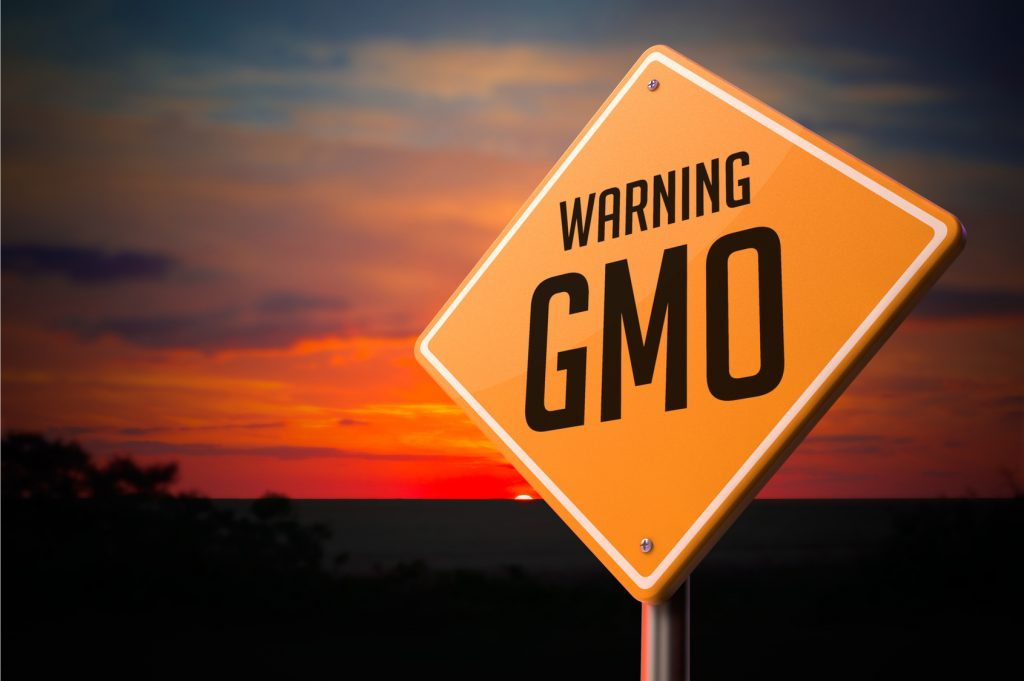 OPED— Questions of GMO Safety Miss the Larger Point