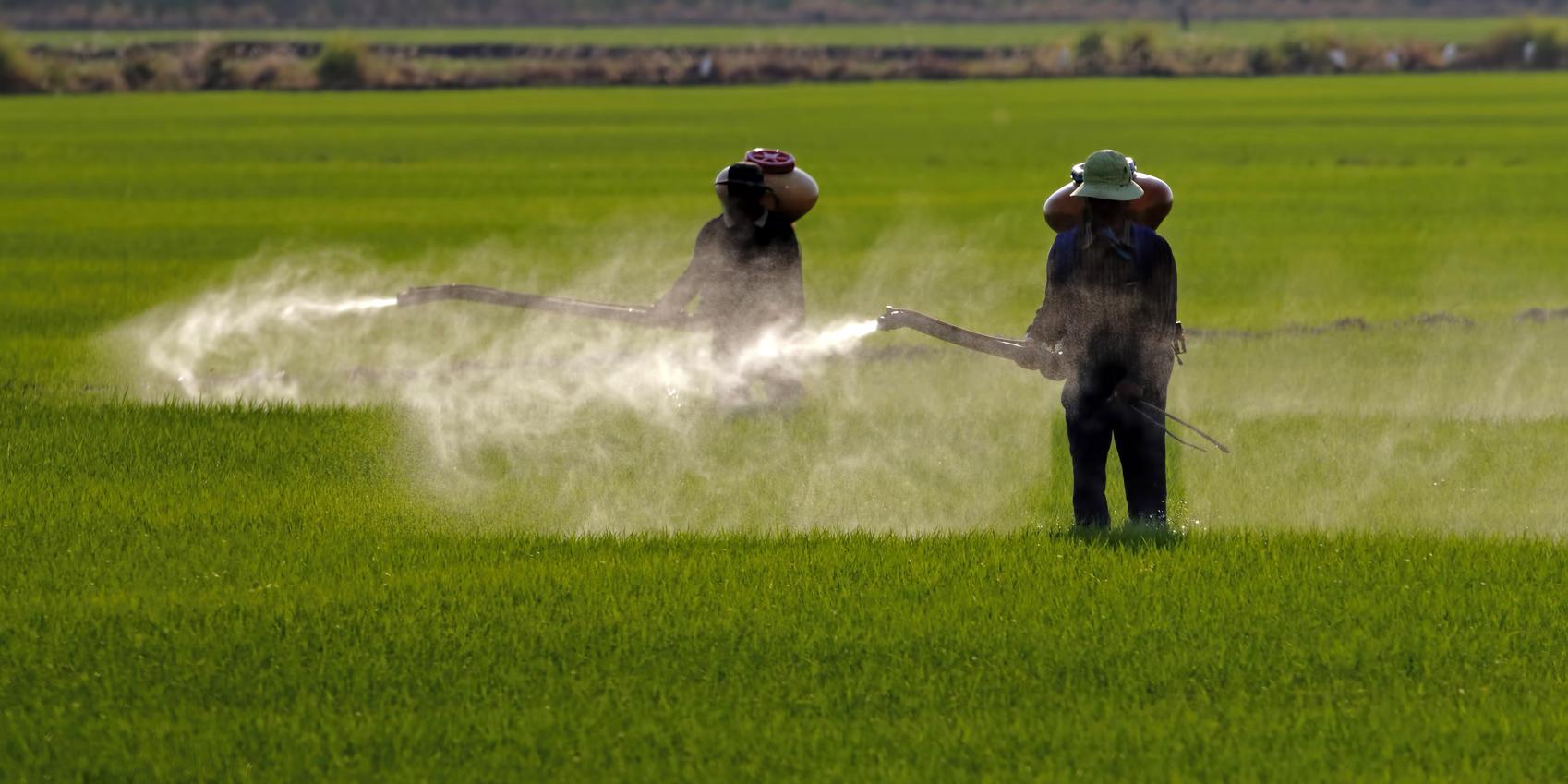 Tell the EPA to Regulate Glyphosate!