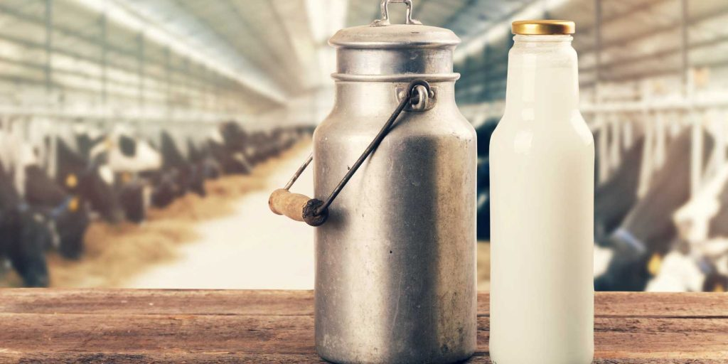 Corn Syrup Used in Organic Milk Production