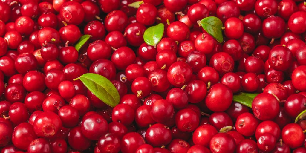 Will FDA Censor the Cranberry?