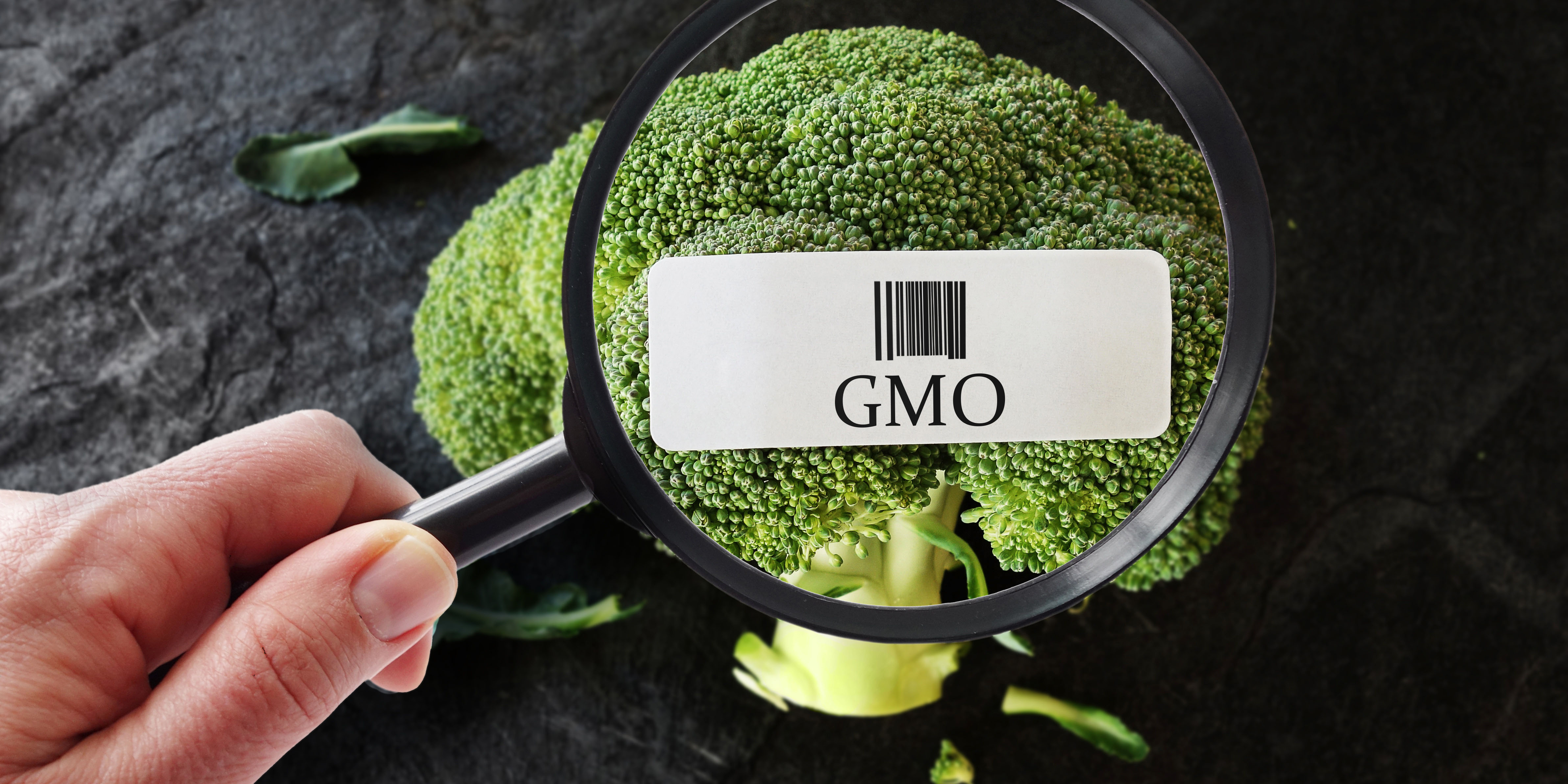Tell USDA: Fix the GMO Labeling Rule!