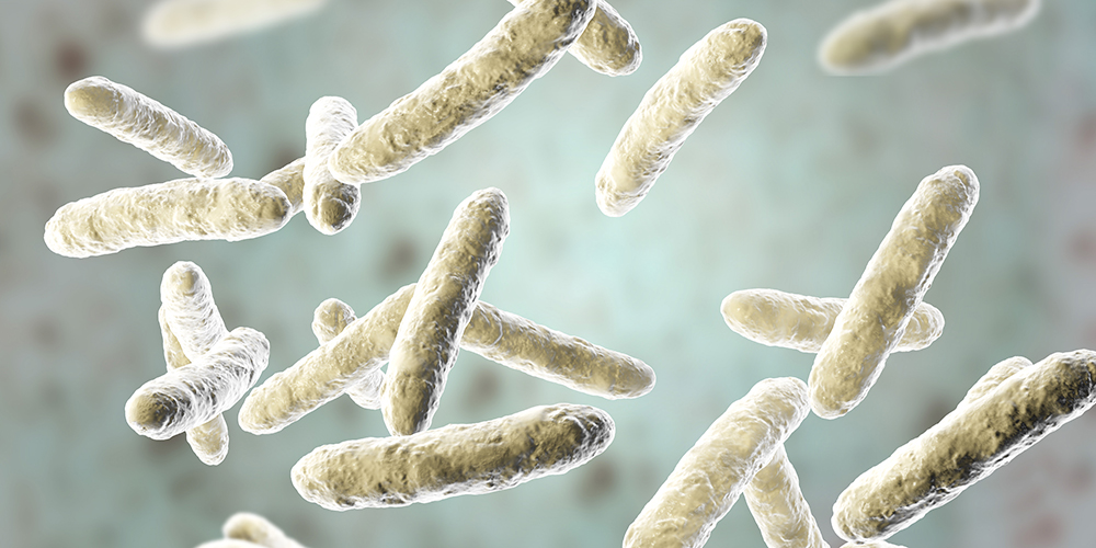 Are Probiotics Useless?