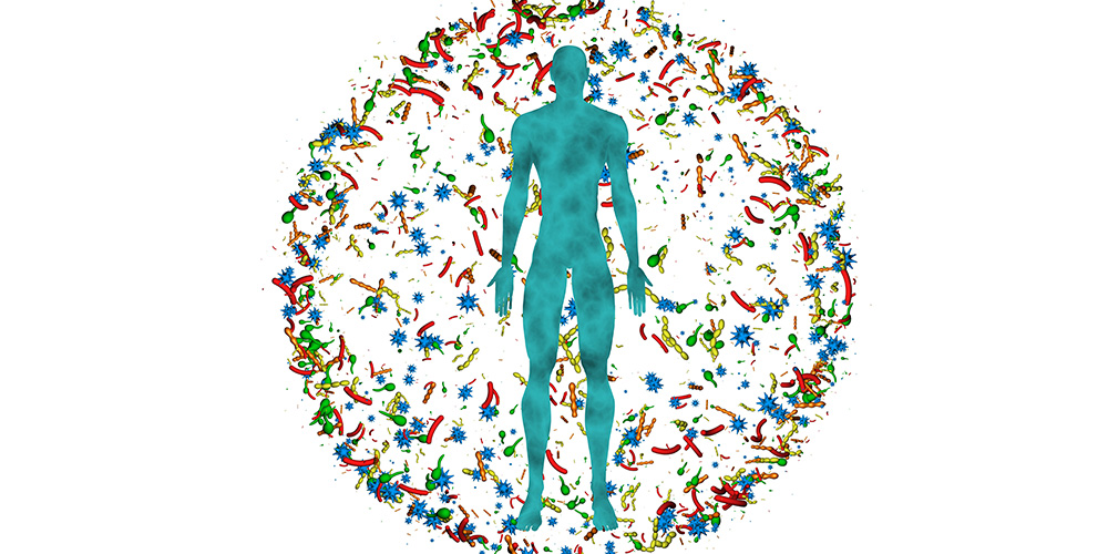 Gut Health: Impacts on Aging and Beyond